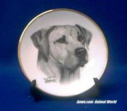 rhodesian ridgeback plate porcelain