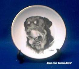 rottweiler plate porcelain