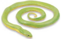 rough green snake toy