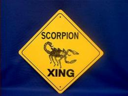 scorpion crossing sign