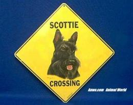 scottie crossing sign scottish terrier