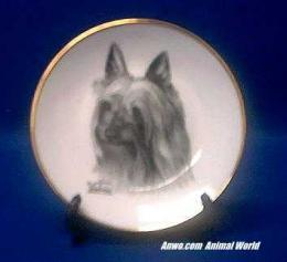 silky terrier plate porcelain