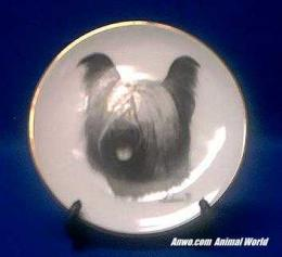 skye terrier plate porcelain