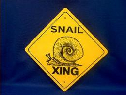 snail crossing sign