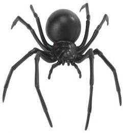 spider toy black widow