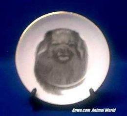tibetan spaniel plate porcelain