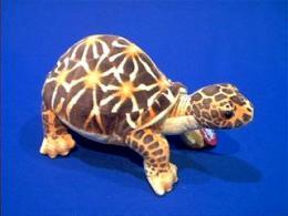 stuffed turtle