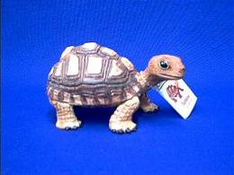 brown tortoise turtle toy