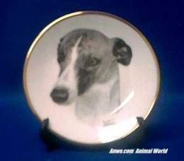 whippet plate porcelain