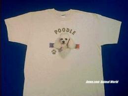 white poodle t shirt face