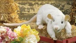 white rat puppet folkmanis