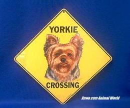 yorkshire terrier crossing sign yorkie