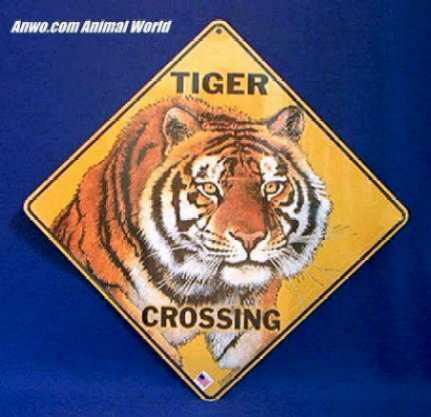 Tiger Crossing Sign At Animal World 174