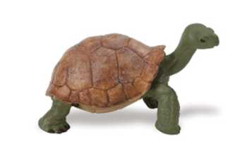 Turtle Toy Tortoise Small At Animal World 174