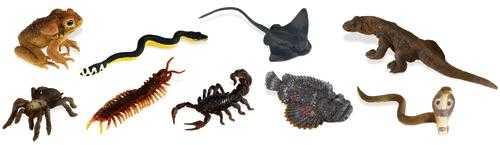 venomous toy tube animals safari
