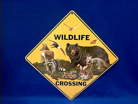 Wildlife Crossing Sign At Animal World 174
